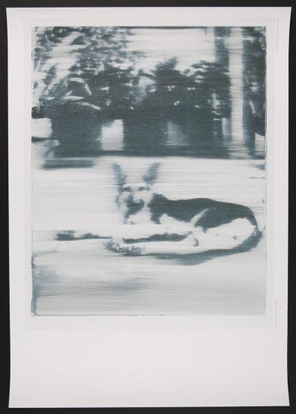 Gerhard Richter. Hund. Plakat, 2019