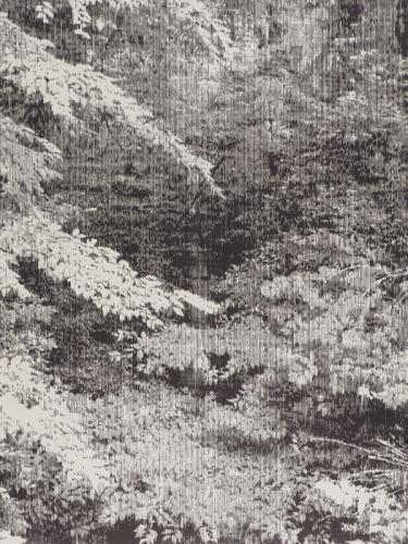 Katsutoshi Yuasa. snapshot #1, 2008. Holzdruck