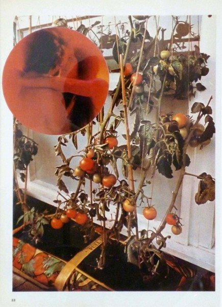 Wade Guyton. The Tomato Lovers, 2006