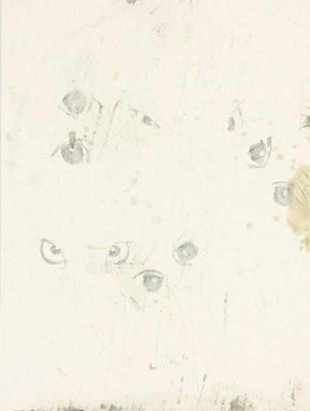 David Ostrowski. Und Ihre Augen schauen Gott, 2009.